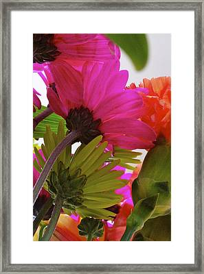 View From Underneath A Bouquet Of Flowers Framed Print