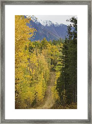 View Of Chugach Mountains From The Framed Print by Michael Criss