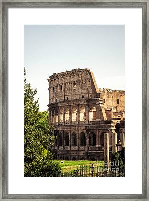 View Of Colosseum Framed Print