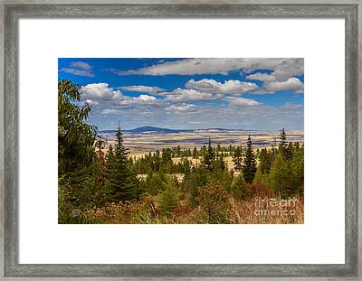 View Of Cottonwood Butte Framed Print by Robert Bales