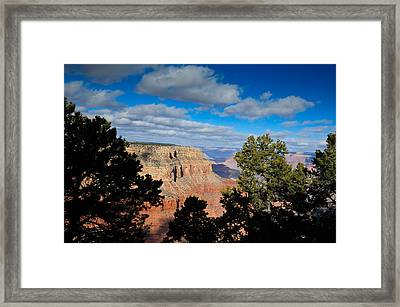 Grand Canyon Through The Junipers Framed Print by Bonnie Fink