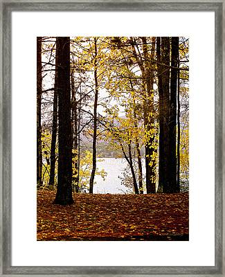 View Of  Lake Mcdonald Framed Print