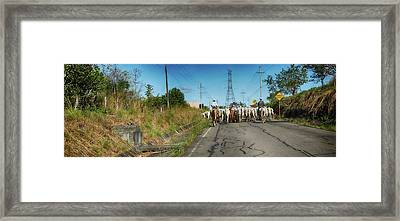 View Of Men With Horses On Road Framed Print by Panoramic Images