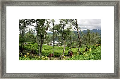 View Of Norwood Tea Factory In Rear Framed Print by Panoramic Images
