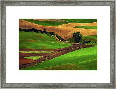 View Of Palouse Cultivation Patterns Framed Print by Michel Hersen