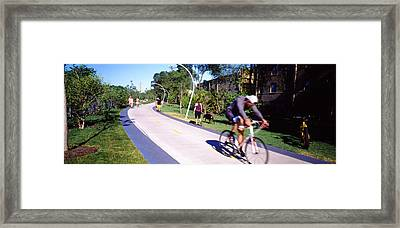 View Of People On Footpath In Park Framed Print by Panoramic Images