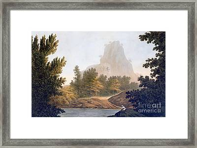 View Of The Jungle Framed Print by William Hodges