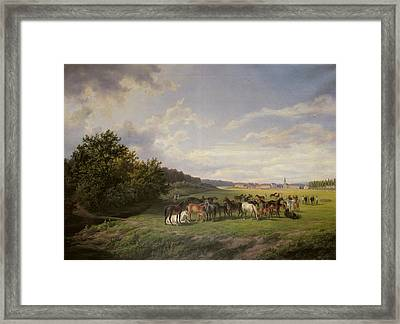 View Of The Kladrub Studfarm In Bohemia, 1850 Framed Print by Anton Schiffer