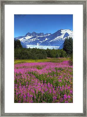 View Of The Mendenhall Glacier Framed Print by Michael Criss