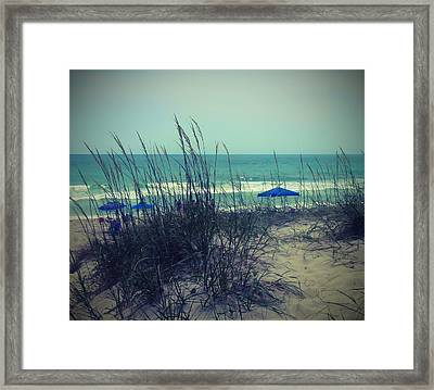 View Thru The Beach Grass Framed Print by Cathy Lindsey
