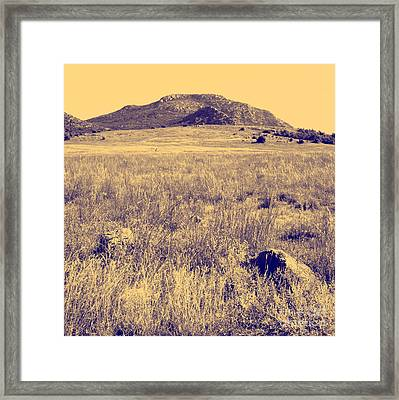View To A Mountain Framed Print by Mickey Harkins