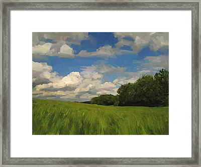 View To The North In Spaubeek Framed Print