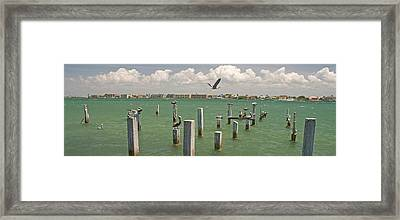 View Toward Cabbage Key From St Framed Print