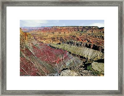 View West Grand Canyon Framed Print by Bob and Nadine Johnston