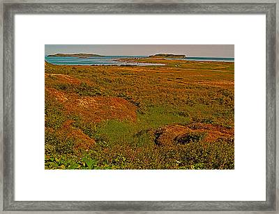 Viking Landing Point At L'anse Aux Meadows-nl Framed Print