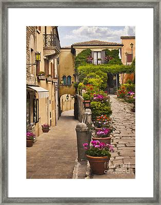 Village Flowers Framed Print