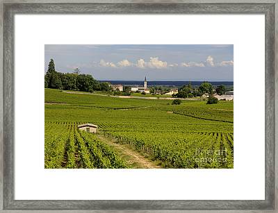 Village Of Aloxe Corton. Cote D'or. Burgundy. France Framed Print