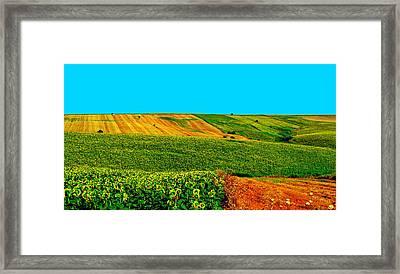 Vincent Van Gogh's Inspiration Framed Print
