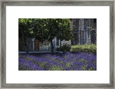 Vincents Garden Framed Print by Joachim G Pinkawa