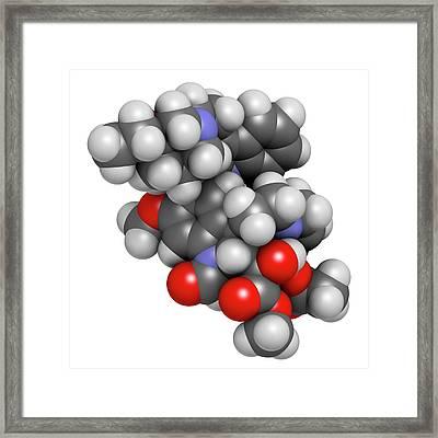 Vincrinstine Cancer Drug Molecule Framed Print by Molekuul