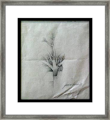 Vine And Branches A 1969 Framed Print by Glenn Bautista