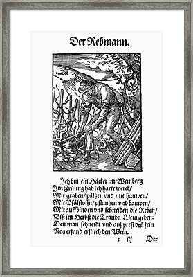 Vinegrower, 1568 Framed Print