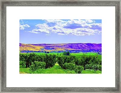 Vinehart Framed Print