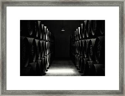 Vinery Framed Print