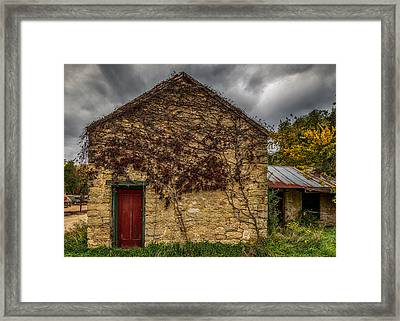 Vines And Brick Framed Print by Paul Freidlund