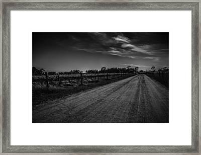 Vines Line The Path Framed Print