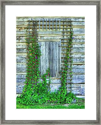 Vines Of Metamora Framed Print by Mel Steinhauer