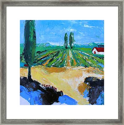 Vineyard 3 Framed Print by Becky Kim