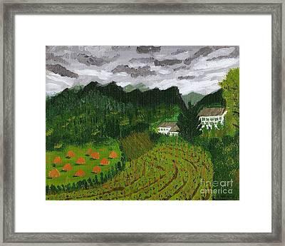 Vineyard And Haystacks Under Stormy Sky Framed Print by Vicki Maheu