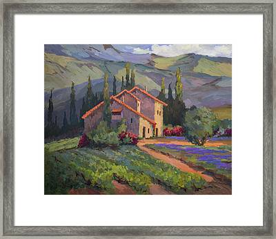 Vineyard And Lavender In Provence Framed Print