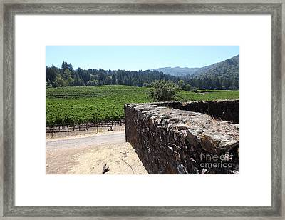 Vineyard And Winery Ruins At Historic Jack London Ranch In Glen Ellen Sonoma California 5d24537 Framed Print by Wingsdomain Art and Photography