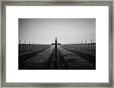 Vineyard Cross Framed Print