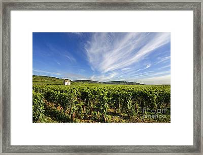 Vineyard Hut. Vineyard. Cote De Beaune. Burgundy. France. Europe Framed Print by Bernard Jaubert