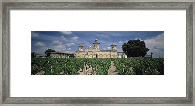 Vineyard In Front Of A Castle, Chateau Framed Print by Panoramic Images