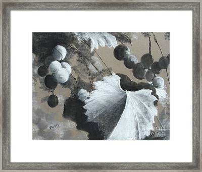Vineyard Framed Print by Mary Lynne Powers