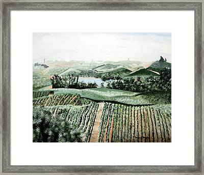 Vineyard On A Foggy Morning Framed Print by Vickie Wright