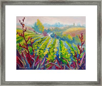 Vineyard Scene Oil Painting Framed Print