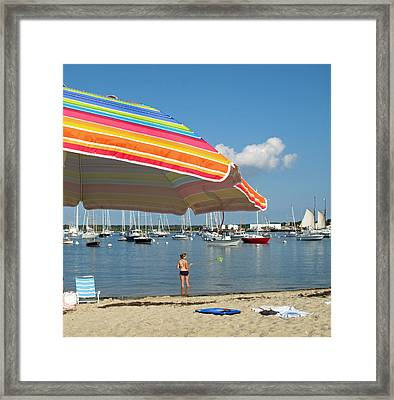 Vineyard Shores Framed Print by Barbara McDevitt