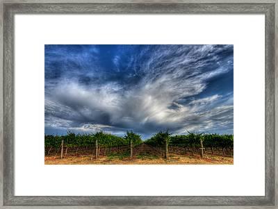 Vineyard Storm Framed Print