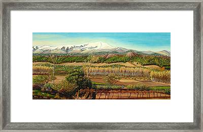 Vineyard Valley In The Sierra Nevada Surroundings Framed Print by Angeles M Pomata