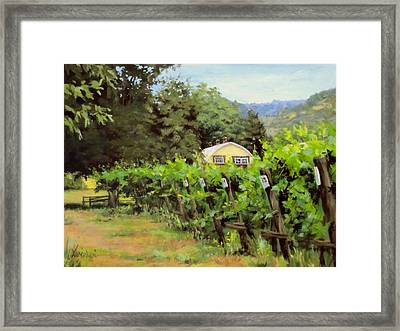 Vineyard View Framed Print