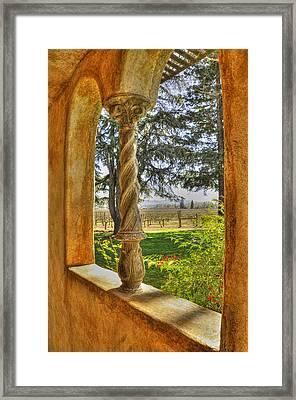 Vineyard View Framed Print by Wendy Elliott