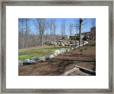 Vineyards In Va - 12121 Framed Print by DC Photographer