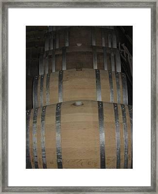 Vineyards In Va - 121218 Framed Print by DC Photographer