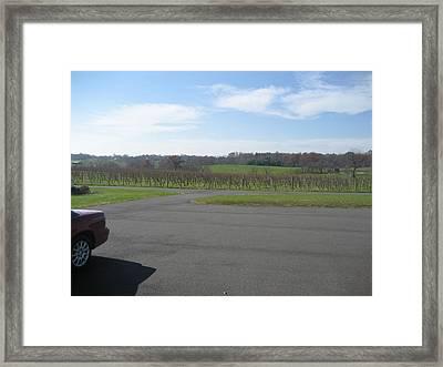 Vineyards In Va - 121230 Framed Print by DC Photographer