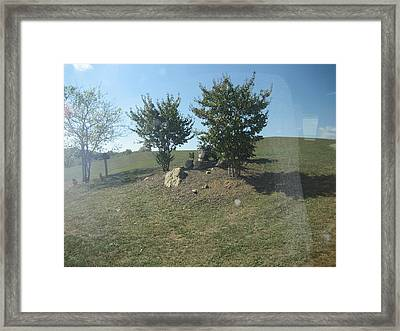 Vineyards In Va - 121239 Framed Print by DC Photographer